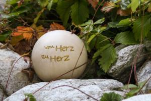 herz_web